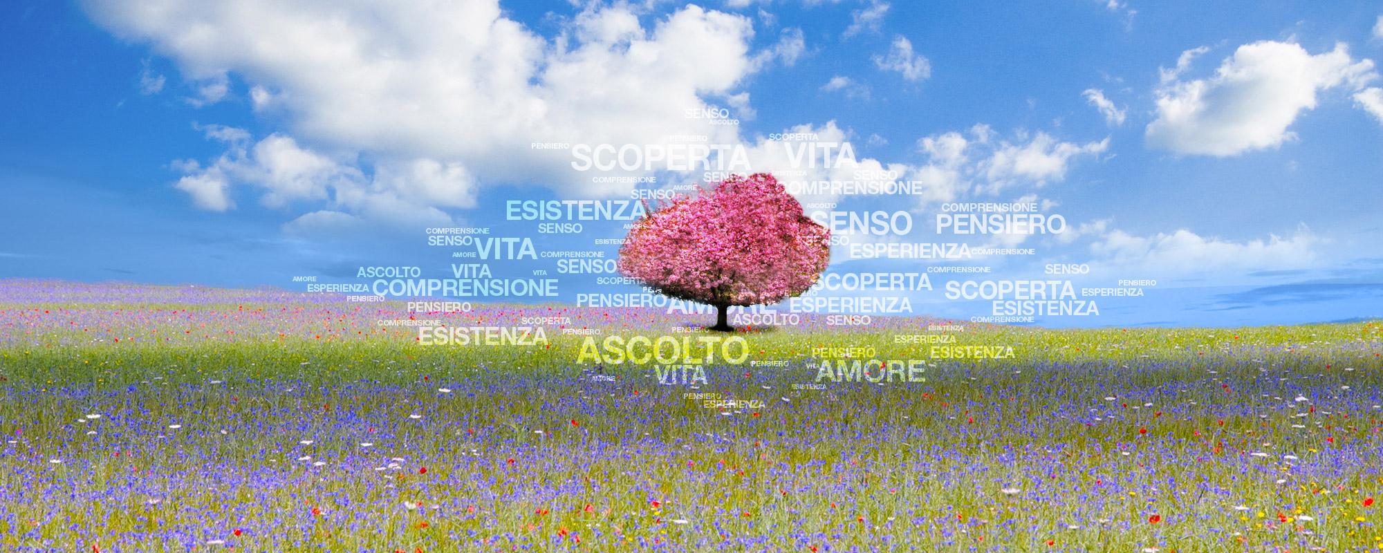 Primavera_2000x800_Home1